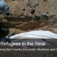 foltercamps-sinai-New-Generation-Foundation-for-Human-Rights-kriegsberichterstattung